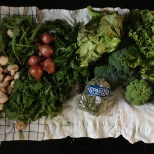 netdoororganics csa bag