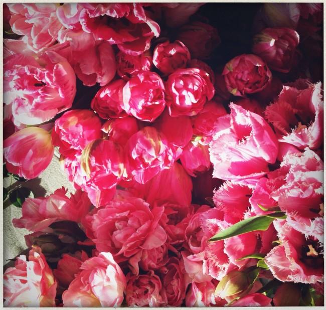 okl_bouquet
