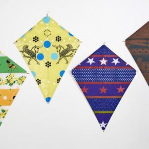fredericks and mae kites