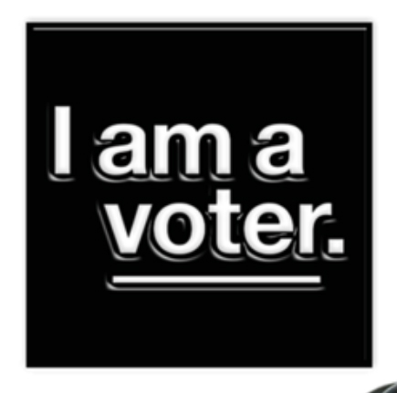 i am a voter pin
